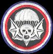 502nd PIR  502nd Parachute Infantry Regiment, US Army